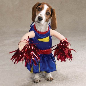 dog cheerleader costume